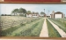 Seen here is a painting of the family farm done by Janiece Kinzle in 1982.